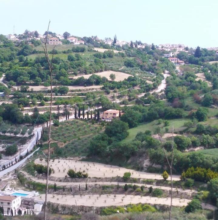 zzxpic3 Villa ariel (3)